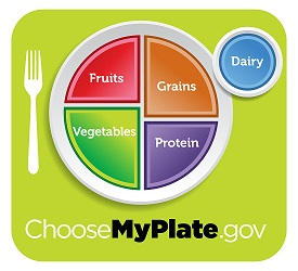 Image of MyPlate food group recommendations